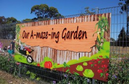Kids Kitchen Gardens Charity